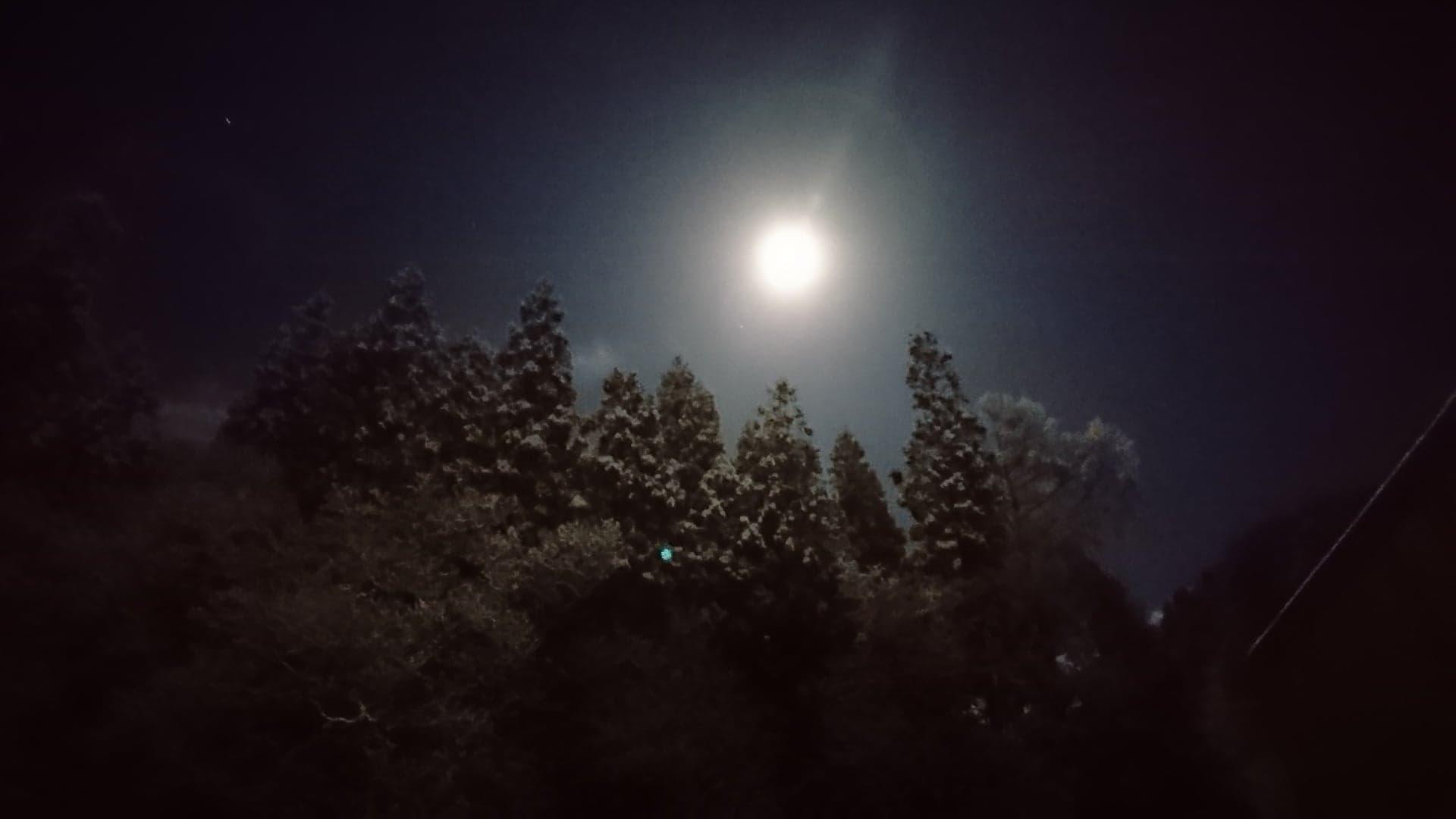 https://www.satoshoten.jp/blog/46521708_295709467725850_5803394402021801984_n.jpg
